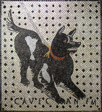 Cave Canem by Luciano Bonzini
